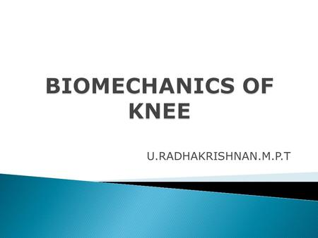 U.RADHAKRISHNAN.M.P.T.  Knee Joint produces Functional shortening and Lengthening of extremity  Knee complex plays a major role in supporting the body.