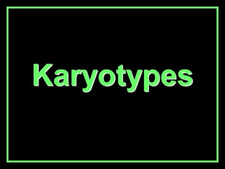 Karyotypes. Karyotypes DefinitionDefinition - A picture of chromosomes cut out and grouped together. Typical human karyotype: –46 total chromosomes –23.