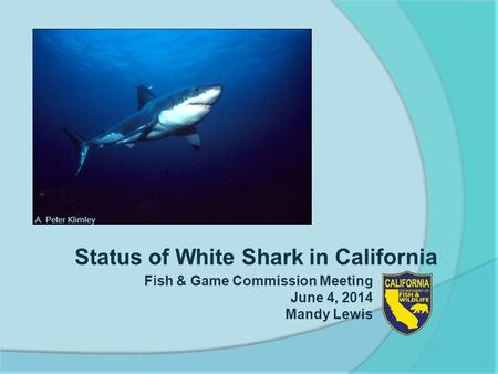 Status of White Shark in California Fish & Game Commission Meeting June 4, 2014 Mandy Lewis A. Peter Klimley.