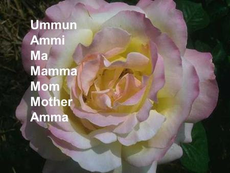 Ummun Ammi Ma Mamma Mom Mother Amma. She was there every time you cried, when a baby. YOU started growing!