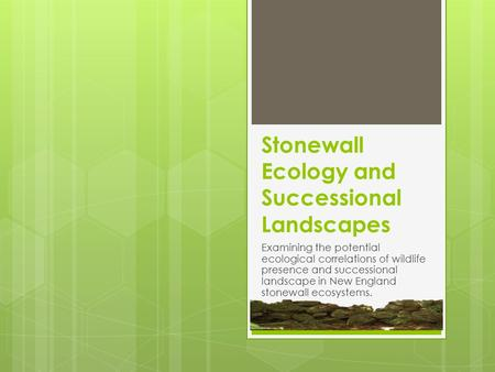 Examining the potential ecological correlations of wildlife presence and successional landscape in New England stonewall ecosystems. Stonewall Ecology.
