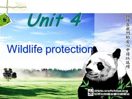 Unit 4 Wildlife protection. elephant milu deer panda.