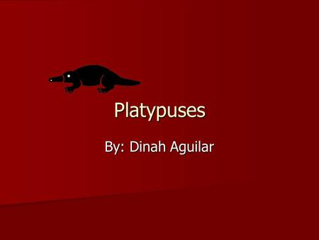 Platypuses By: Dinah Aguilar. Table of Contents What They Look Like……………….…………1 What They Look Like……………….…………1 Are They a Good pet …………………………2 Are They.