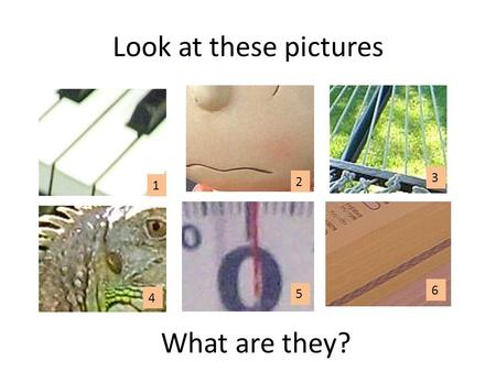 Look at these pictures What are they? 1 2 3 4 5 6.