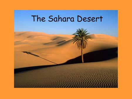 The Sahara Desert. The Sahara Desert is the second largest desert in the world. It is in North Africa and covers 11 different African countries.