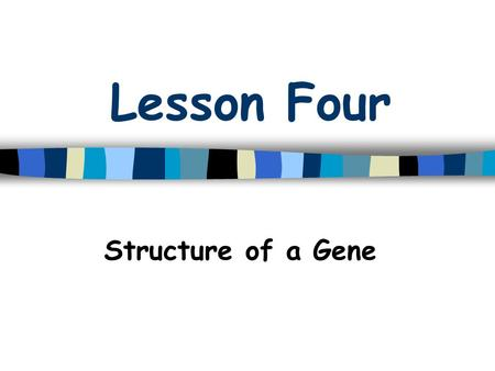 Lesson Four Structure of a Gene. Gene Structure What is a gene? Gene: a unit of DNA on a chromosome that codes for a protein(s) –Exons –Introns –Promoter.