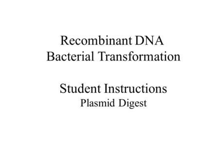 Recombinant DNA Bacterial Transformation Student Instructions Plasmid Digest.