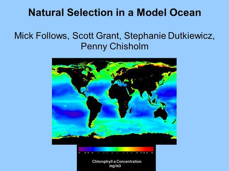 Natural Selection in a Model Ocean Mick Follows, Scott Grant, Stephanie Dutkiewicz, Penny Chisholm MIT.