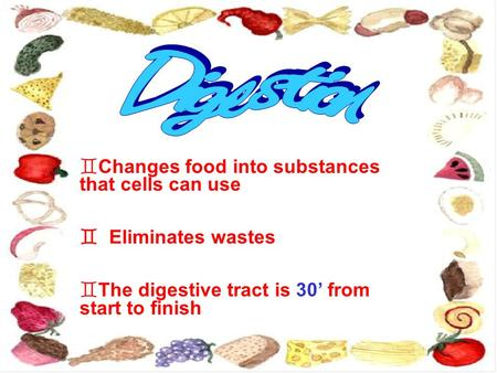  Changes food into substances that cells can use  Eliminates wastes  The digestive tract is 30' from start to finish.