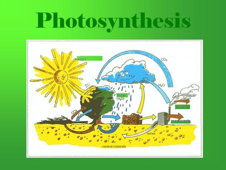 Photosynthesis. What is Photosynthesis? Photosynthesis uses the energy of sunlight to convert water and carbon dioxide into high energy sugars and oxygen.