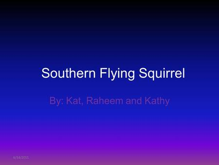 6/14/2011 Southern Flying Squirrel By: Kat, Raheem and Kathy.