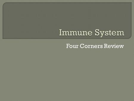 Four Corners Review. A. The skin and mucous membrane B. Helper T Cells C. B Cells D. Antibodies.