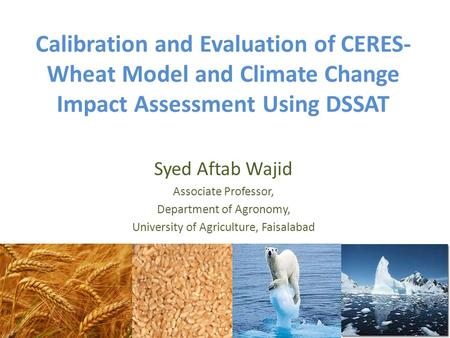 Calibration and Evaluation of CERES- Wheat Model and Climate Change Impact Assessment Using DSSAT Syed Aftab Wajid Associate Professor, Department of Agronomy,