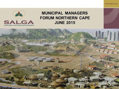Www.salga.org.za MUNICIPAL MANAGERS FORUM NORTHERN CAPE JUNE 2015.