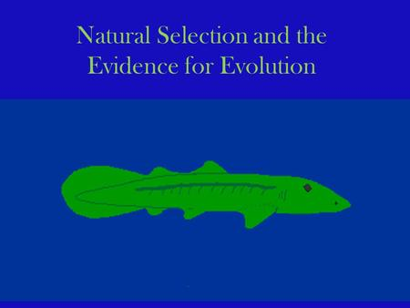 Natural Selection and the Evidence for Evolution.
