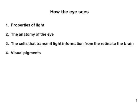 How the eye sees 1.Properties of light 2.The anatomy of the eye 3.The cells that transmit light information from the retina to the brain 4.Visual pigments.