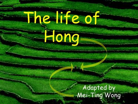 The life of Hong Adapted by Mei-Ting Wong A long time ago, there was a farmer. His name was Hong. He lived in China.