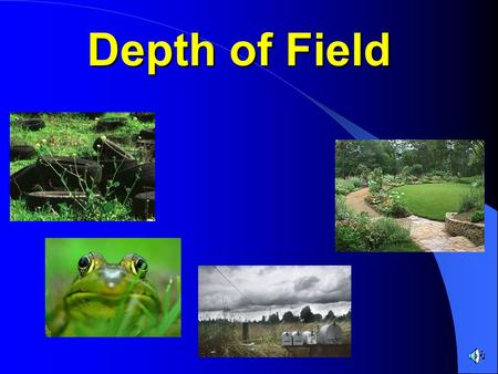 Depth of Field. Understanding how to control the depth of field in a photograph is an essential skill for you to learn and apply to your own photographs.