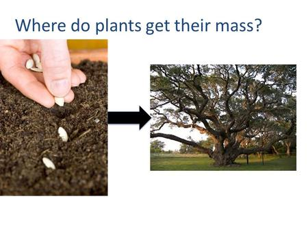 Where do plants get their mass? An acre of pine trees (~120 trees) has the potential to take in roughly 5 tons of CO2 per year. How much is a ton?