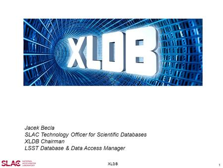 1 XLDB Jacek Becla SLAC Technology Officer for Scientific Databases XLDB Chairman LSST Database & Data Access Manager.