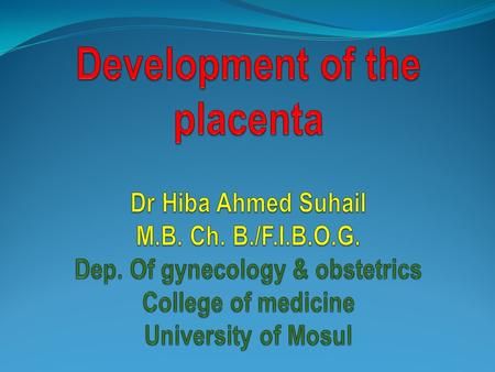 Development of the placenta It is a functioning feto maternal organ originated from both the trophoblastic chorionic plate (fetal part ) and the decidual.