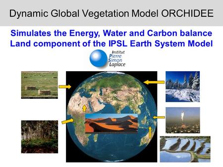 Dynamic Global Vegetation Model ORCHIDEE Simulates the Energy, Water and Carbon balance Land component of the IPSL Earth System Model.