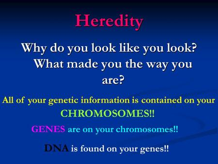 Heredity Why do you look like you look? What made you the way you are? All of your genetic information is contained on your CHROMOSOMES!! GENES are on.