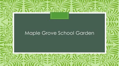 Maple Grove School Garden
