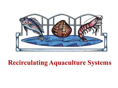 Recirculating Aquaculture Systems. 2 Recirculating aquaculture systems (RAS) are systems in which aquatic organisms are cultured in water which is serially.