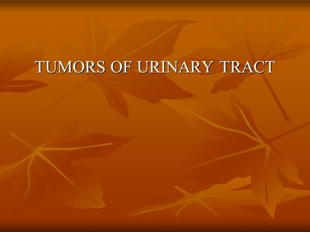 TUMORS OF URINARY TRACT RENAL PARENCHYMAL NEOPLASMS.