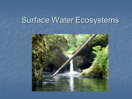 Surface Water Ecosystems. Rivers and Streams River- large, flowing body of water that erodes the floodplain over time River- large, flowing body of water.
