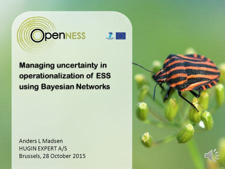 Managing uncertainty in operationalization of ESS using Bayesian Networks Anders L Madsen HUGIN EXPERT A/S Brussels, 28 October 2015.