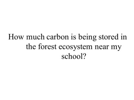 How much carbon is being stored in the forest ecosystem near my school?