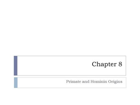 Chapter 8 Primate and Hominin Origins. What are these?  Primate  Australopithecine  Homo  Hominin.