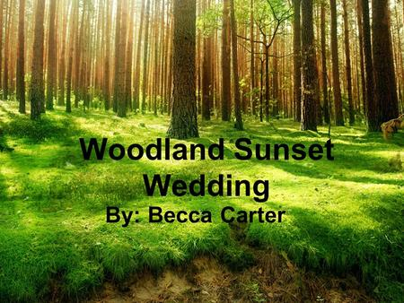 "Woodland Sunset Wedding By: Becca Carter. Theme Explanation The ""Woodland Sunset Wedding"" theme is whimsical and vintage-inspired, yet vibrant and modern."
