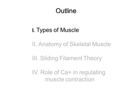 Outline I. Types of Muscle II. Anatomy of Skeletal Muscle III. Sliding Filament Theory IV. Role of Ca+ in regulating muscle contraction.