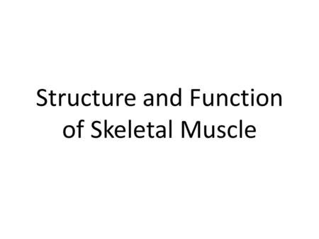 Structure and Function of Skeletal Muscle. Three classes of muscle Skeletal muscle-responsible for locomotion Cardiac muscle-responsible for the action.