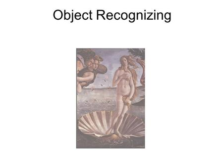 Object Recognizing. Object Classes Individual Recognition.