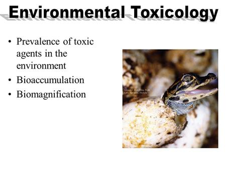 Prevalence of toxic agents in the environment Bioaccumulation Biomagnification.
