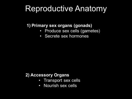 Reproductive Anatomy 1)Primary sex organs (gonads) Produce sex cells (gametes) Secrete sex hormones 2) Accessory Organs Transport sex cells Nourish sex.