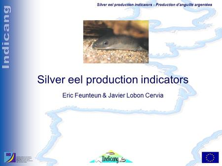 Silver eel production indicators - Production d'anguille argentées Silver eel production indicators Eric Feunteun & Javier Lobon Cervia.