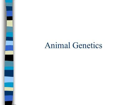 Animal Genetics. ANIMAL GENETICS Differences in animals are brought about by 2 groups of factors: genetic and environmental factors. One set of differences.
