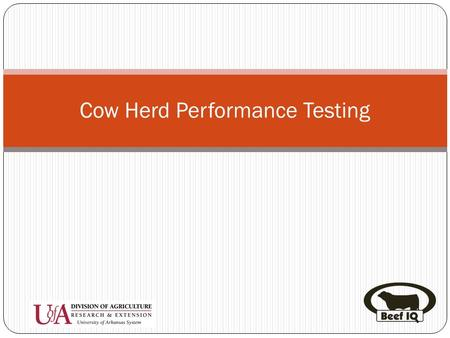 Cow Herd Performance Testing. Introduction Help evaluate economically important traits Calving ease Birth weight Weaning weight Calving interval Calf.