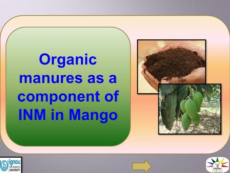 Organic manures as a component of INM in Mango. Organic manures are important for maintaining soil health by enhancing the biological cycles and improving.