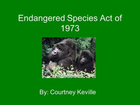 Endangered Species Act of 1973 By: Courtney Keville.