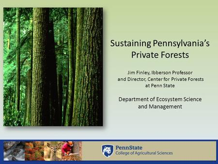 Sustaining Pennsylvania's Private Forests Jim Finley, Ibberson Professor and Director, Center for Private Forests at Penn State Department of Ecosystem.