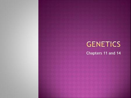 Chapters 11 and 14  The scientific study of heredity- how traits are passed down to offspring TRAIT---Specific characteristic ( blonde hair, blue eyes)