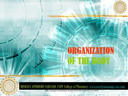 ORGANIZATION OF THE BODY ROSELYN APEROCHO NARANJO. USPF College of Pharmacy.