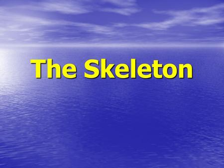 The Skeleton. Facts Without your skeleton you would be a shapeless sack of flesh. Without your skeleton you would be a shapeless sack of flesh. It consists.