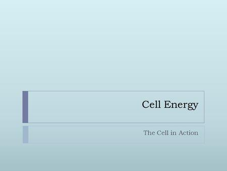 Cell Energy The Cell in Action. Cell Energy  Why do you get hungry?  Feeling hungry is your body's way of telling you that your cells need energy.